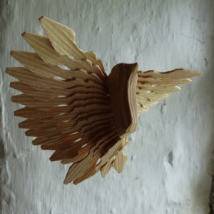 fan bird in window square